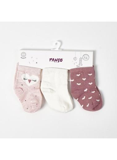 Panço PanÇo 23 Yaş 3'lü Renkli Kız Bebek Çorap Renksiz